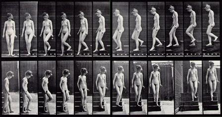 muybridge_descending_stairs
